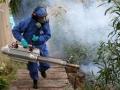 Epidemiología Guatemala.jpg